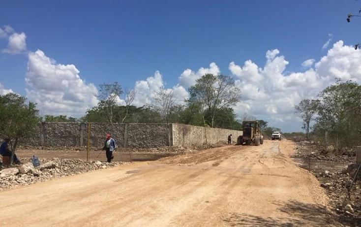Foto de terreno habitacional en venta en  , dzitya, mérida, yucatán, 1179055 No. 09