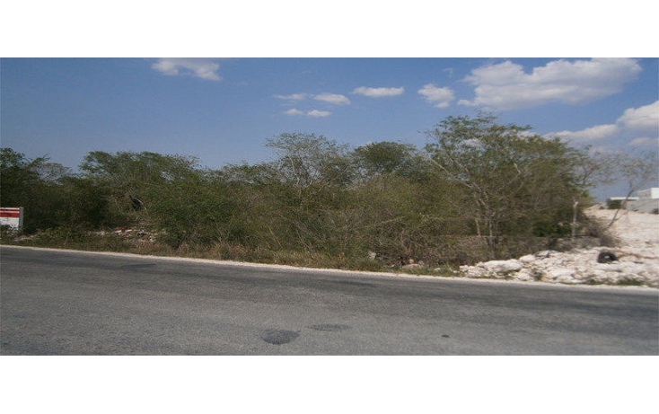 Foto de terreno comercial en venta en  , dzitya, mérida, yucatán, 1201159 No. 02