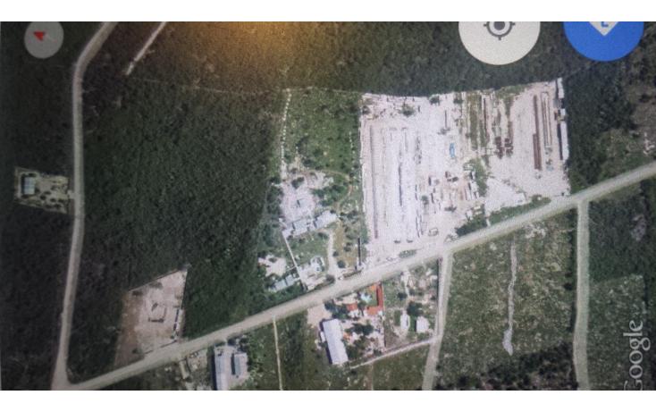 Foto de terreno habitacional en venta en  , dzitya, mérida, yucatán, 1209051 No. 02
