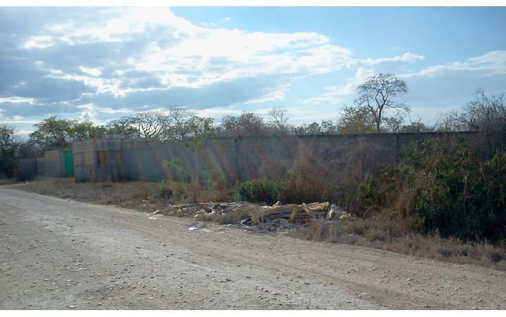 Foto de terreno comercial en venta en  , dzitya, mérida, yucatán, 1259775 No. 01