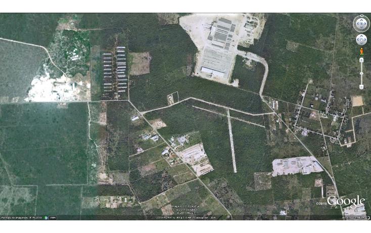 Foto de terreno comercial en venta en  , dzitya, mérida, yucatán, 1259775 No. 04