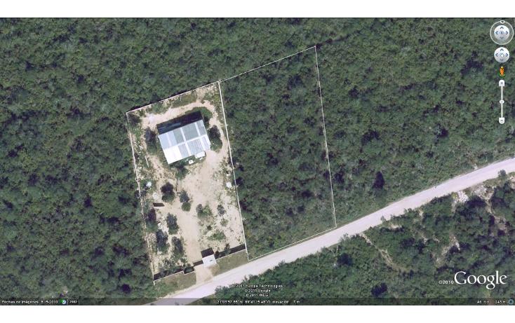 Foto de terreno comercial en venta en  , dzitya, mérida, yucatán, 1259775 No. 06