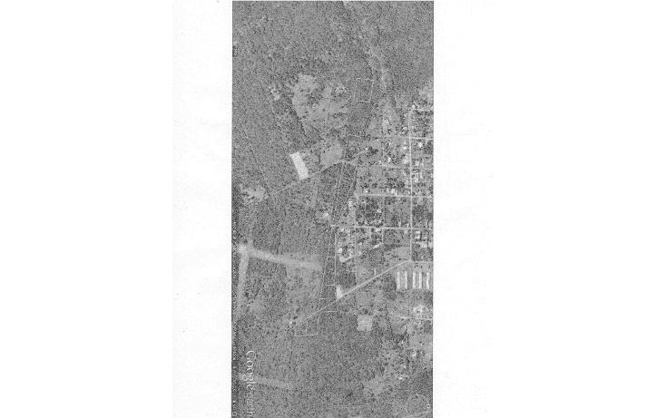 Foto de terreno habitacional en venta en  , dzitya, mérida, yucatán, 1269061 No. 13