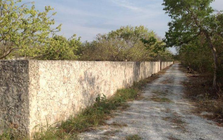 Foto de terreno habitacional en venta en, dzitya, mérida, yucatán, 1283277 no 03