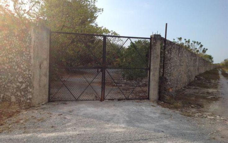 Foto de terreno habitacional en venta en, dzitya, mérida, yucatán, 1283277 no 04