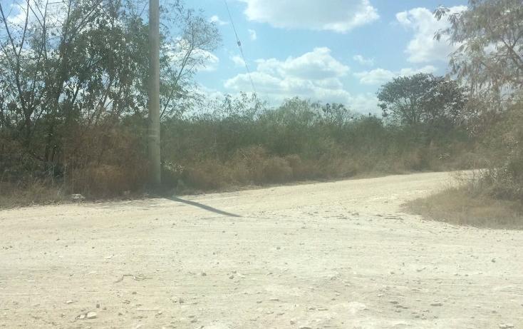 Foto de terreno comercial en venta en, dzitya, mérida, yucatán, 1296575 no 03