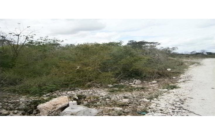 Foto de terreno comercial en venta en  , dzitya, mérida, yucatán, 1296575 No. 03