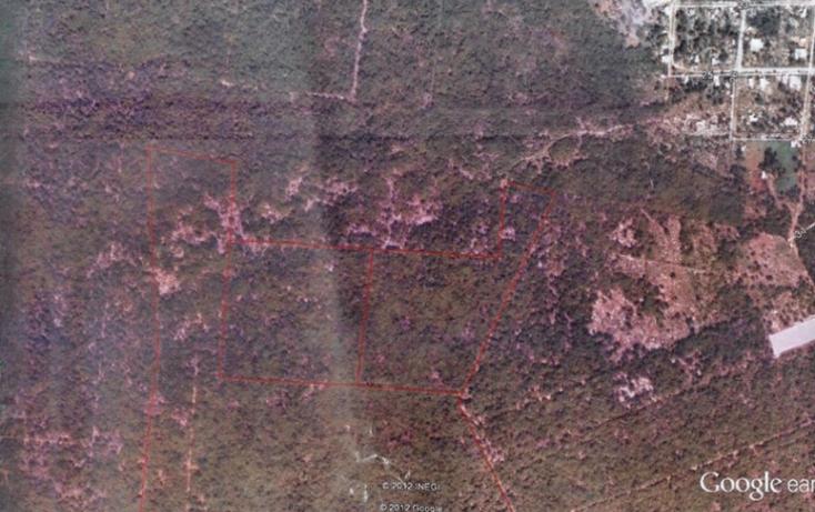 Foto de terreno habitacional en venta en  , dzitya, mérida, yucatán, 1297983 No. 05