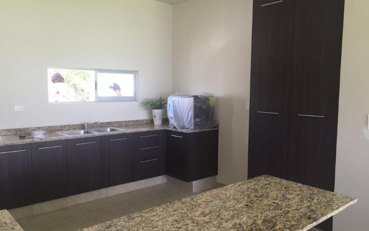 Foto de casa en venta en  , dzitya, mérida, yucatán, 1316211 No. 16