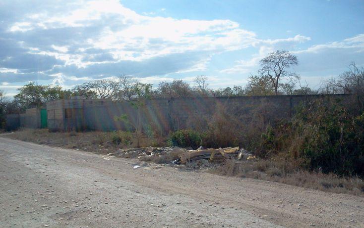 Foto de terreno habitacional en venta en, dzitya, mérida, yucatán, 1340697 no 05