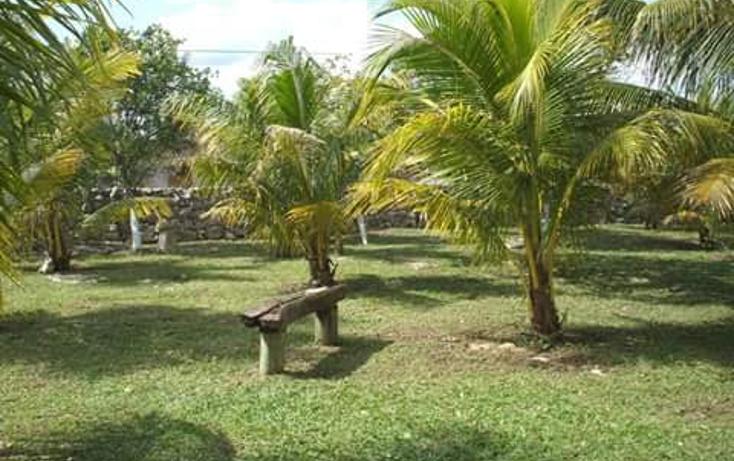 Foto de terreno comercial en venta en  , dzitya, mérida, yucatán, 1382177 No. 03