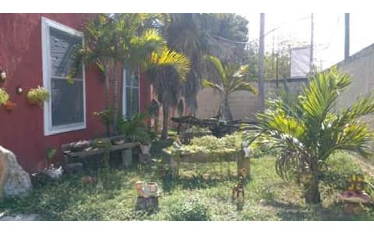 Foto de terreno comercial en venta en  , dzitya, mérida, yucatán, 1382177 No. 04