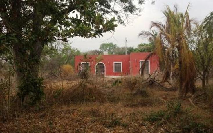 Foto de terreno comercial en venta en  , dzitya, mérida, yucatán, 1382177 No. 06