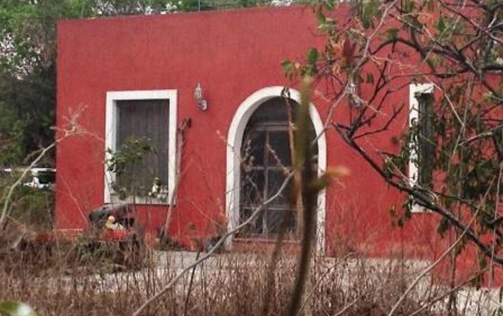 Foto de terreno comercial en venta en  , dzitya, mérida, yucatán, 1382177 No. 07
