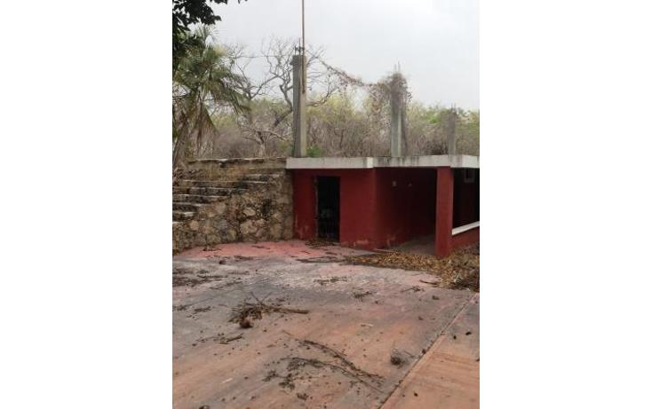 Foto de terreno comercial en venta en  , dzitya, mérida, yucatán, 1382177 No. 10