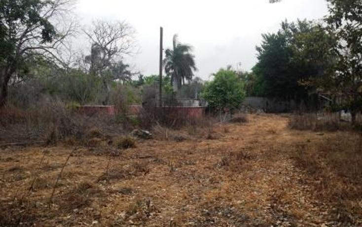 Foto de terreno comercial en venta en  , dzitya, mérida, yucatán, 1382177 No. 12