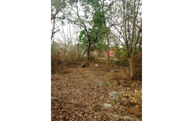 Foto de terreno comercial en venta en  , dzitya, mérida, yucatán, 1382177 No. 14