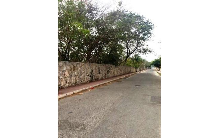 Foto de terreno comercial en venta en  , dzitya, mérida, yucatán, 1382177 No. 15