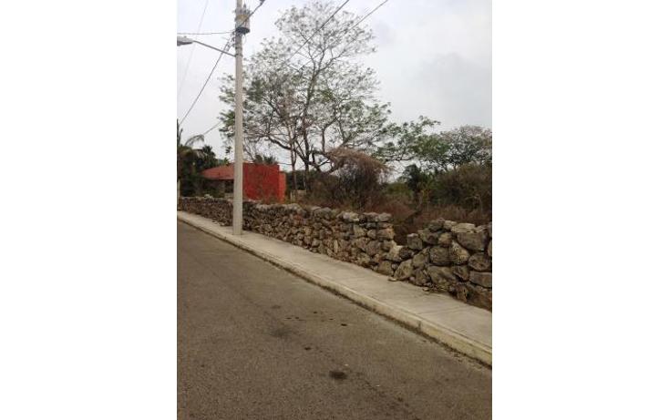 Foto de terreno comercial en venta en  , dzitya, mérida, yucatán, 1382177 No. 16
