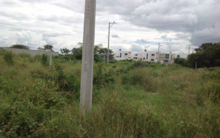 Foto de terreno habitacional en venta en, dzitya, mérida, yucatán, 1389151 no 07