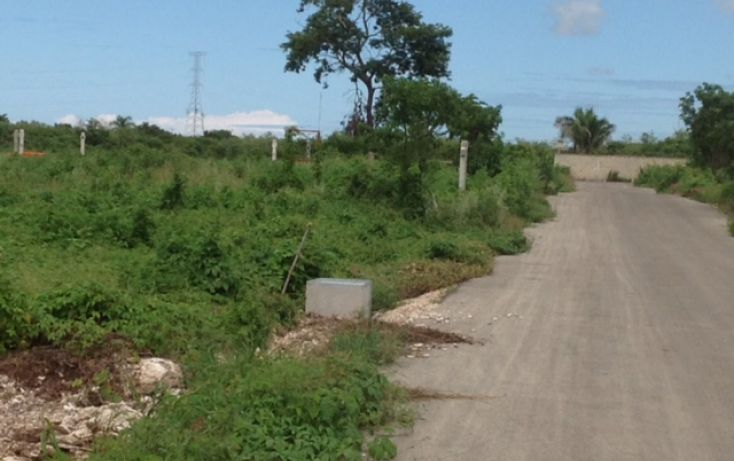 Foto de terreno habitacional en venta en, dzitya, mérida, yucatán, 1389151 no 08