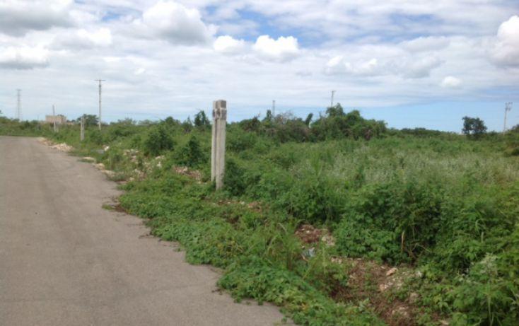 Foto de terreno habitacional en venta en, dzitya, mérida, yucatán, 1389151 no 10