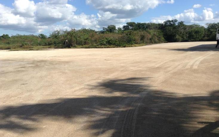 Foto de terreno habitacional en venta en  , dzitya, mérida, yucatán, 1423221 No. 03
