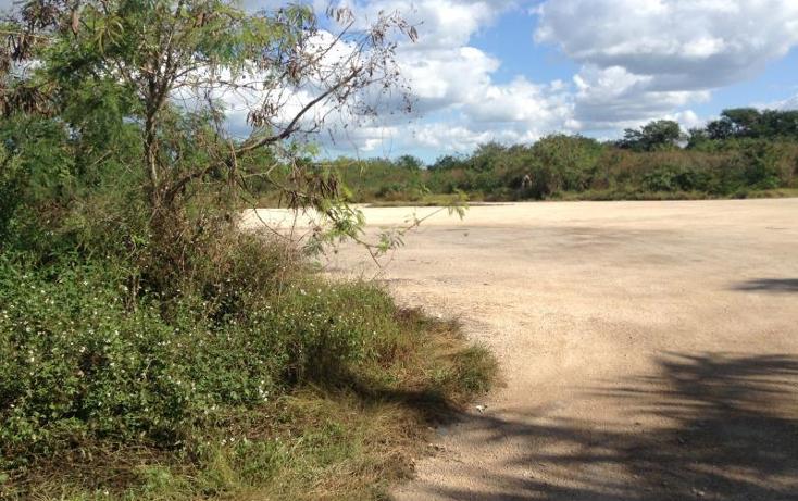 Foto de terreno habitacional en venta en  , dzitya, mérida, yucatán, 1423221 No. 05