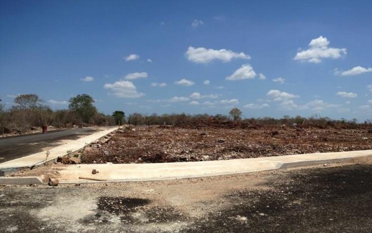 Foto de terreno habitacional en venta en  , dzitya, mérida, yucatán, 1440381 No. 01