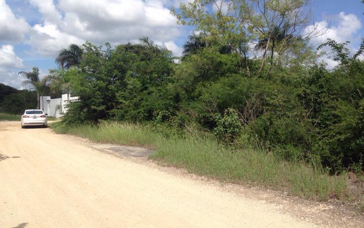 Foto de terreno habitacional en venta en  , dzitya, mérida, yucatán, 1513318 No. 05