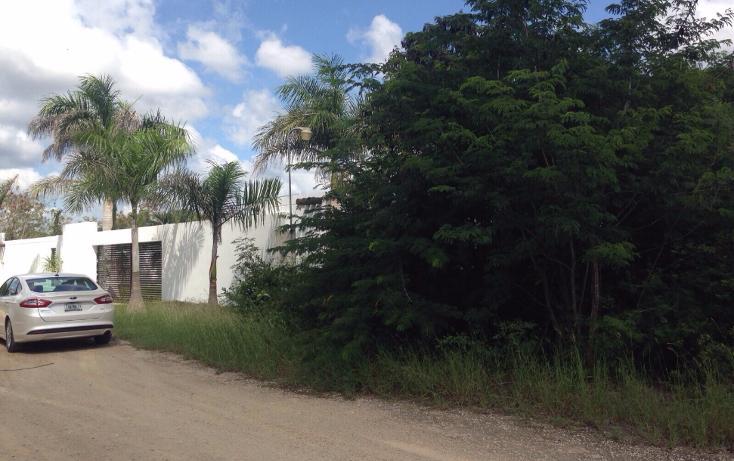 Foto de terreno habitacional en venta en  , dzitya, mérida, yucatán, 1513318 No. 06