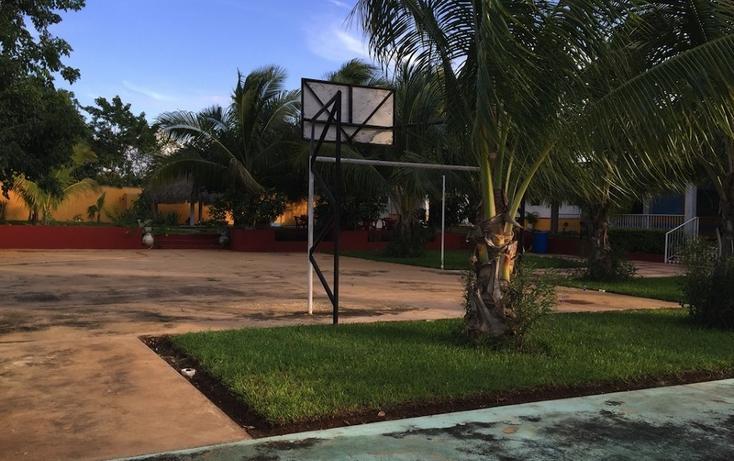 Foto de rancho en venta en  , dzitya, mérida, yucatán, 1514506 No. 05