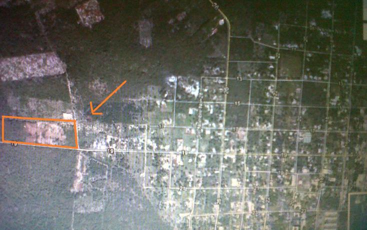 Foto de terreno industrial en venta en  , dzitya, mérida, yucatán, 1522347 No. 01