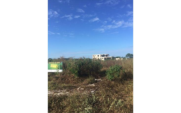 Foto de terreno habitacional en venta en  , dzitya, mérida, yucatán, 1554568 No. 01