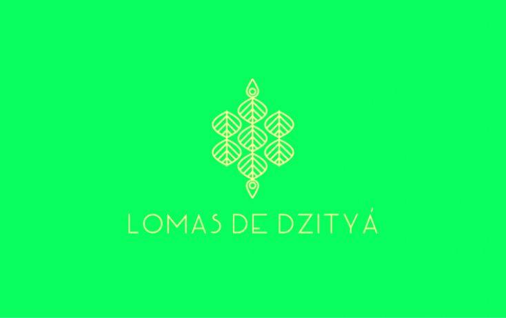 Foto de terreno habitacional en venta en, dzitya, mérida, yucatán, 1556354 no 04