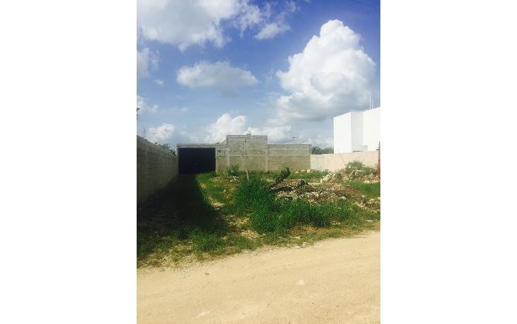 Foto de terreno habitacional en venta en  , dzitya, mérida, yucatán, 1643502 No. 02