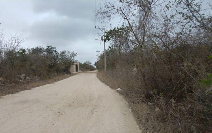Foto de terreno habitacional en venta en, dzitya, mérida, yucatán, 1690258 no 01