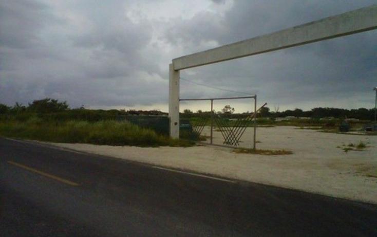 Foto de terreno comercial en venta en  , dzitya, mérida, yucatán, 1702220 No. 03