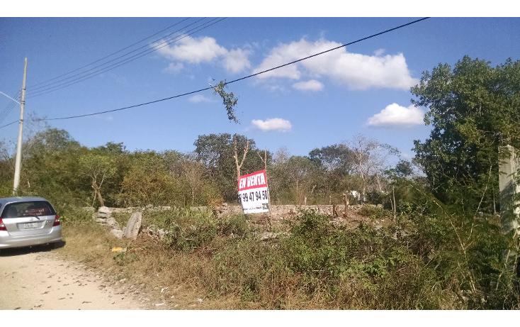 Foto de terreno habitacional en venta en  , dzitya, mérida, yucatán, 1721978 No. 04