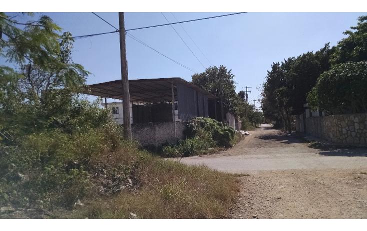 Foto de terreno habitacional en venta en  , dzitya, mérida, yucatán, 1721978 No. 05
