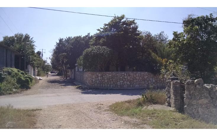 Foto de terreno habitacional en venta en  , dzitya, mérida, yucatán, 1721978 No. 06
