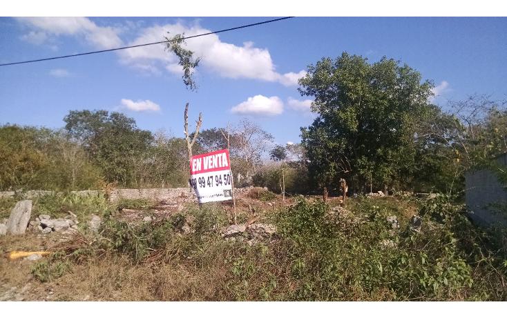 Foto de terreno habitacional en venta en  , dzitya, mérida, yucatán, 1721978 No. 07