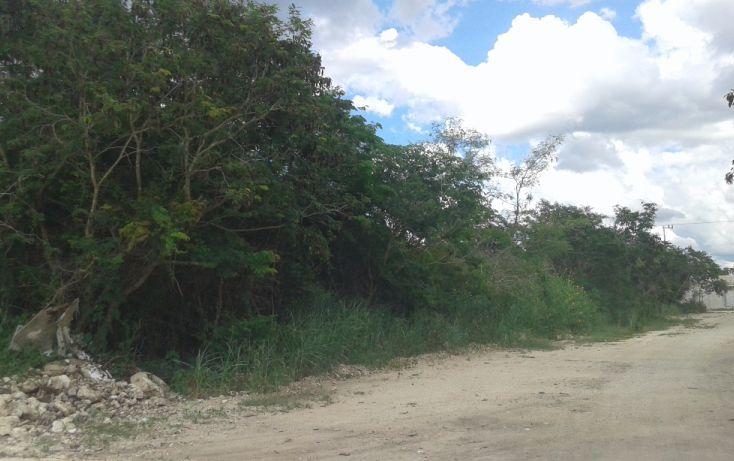 Foto de terreno habitacional en venta en, dzitya, mérida, yucatán, 1729876 no 01