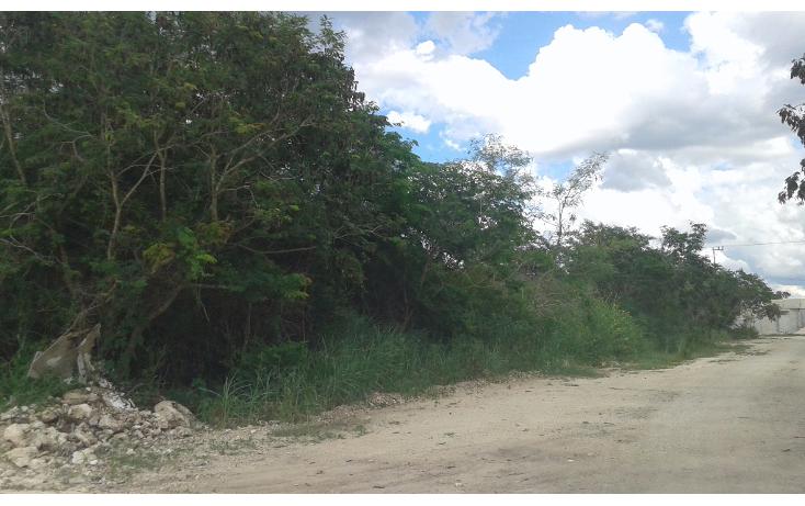 Foto de terreno habitacional en venta en  , dzitya, mérida, yucatán, 1729876 No. 01