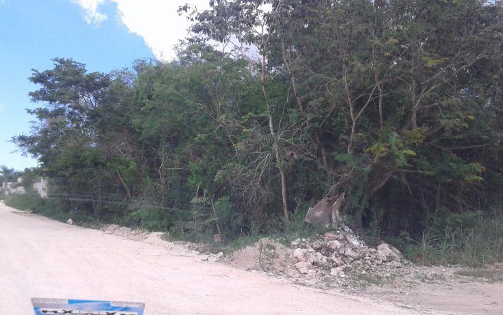 Foto de terreno habitacional en venta en, dzitya, mérida, yucatán, 1729876 no 02