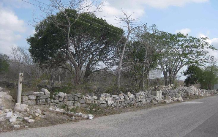 Foto de terreno habitacional en venta en  , dzitya, mérida, yucatán, 1961298 No. 02