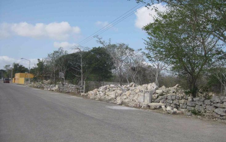 Foto de terreno habitacional en venta en  , dzitya, mérida, yucatán, 1961298 No. 03