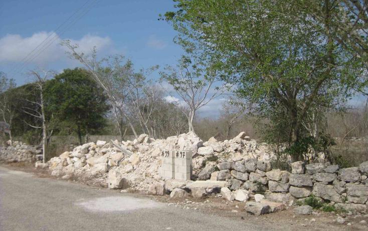 Foto de terreno habitacional en venta en  , dzitya, mérida, yucatán, 1961298 No. 04
