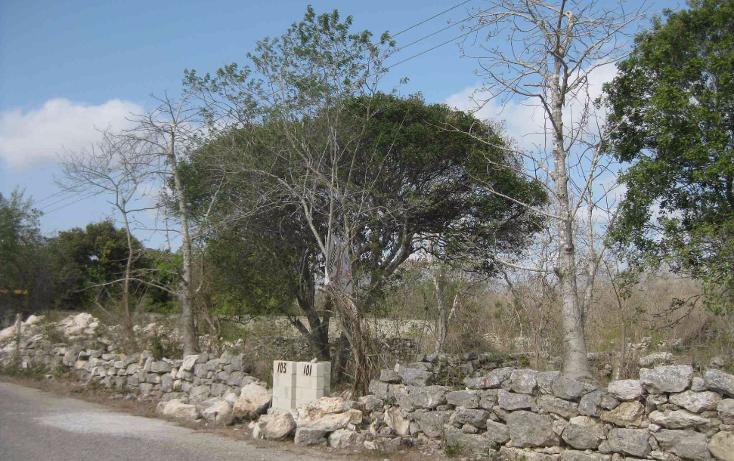 Foto de terreno habitacional en venta en  , dzitya, mérida, yucatán, 1961298 No. 05