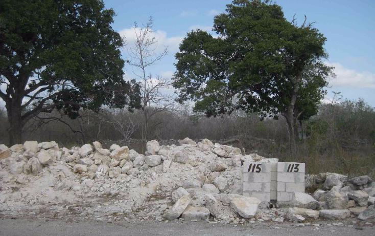 Foto de terreno habitacional en venta en  , dzitya, mérida, yucatán, 1961298 No. 07